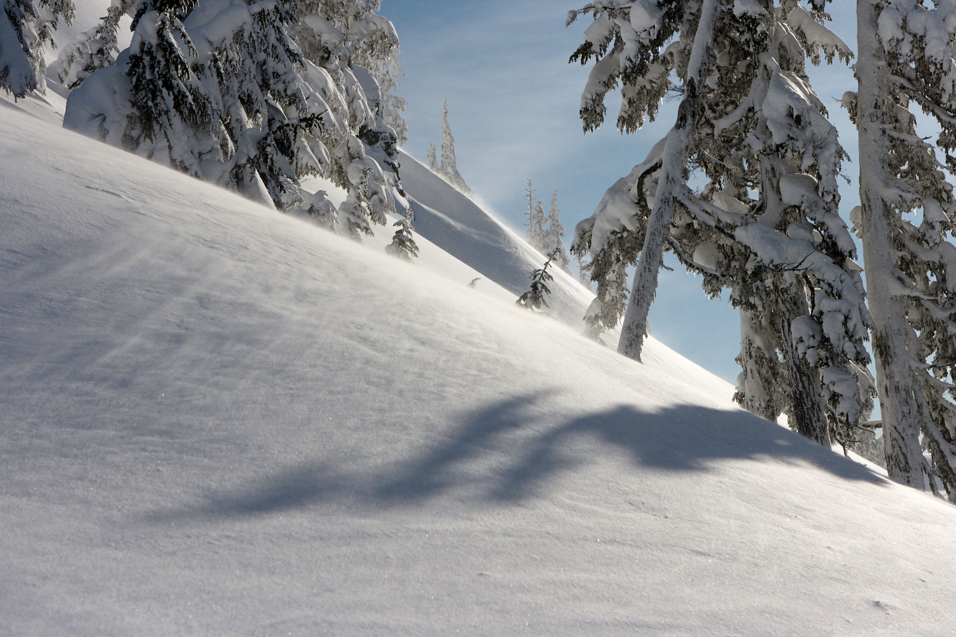 Cascade Backcountry Ski Patrol
